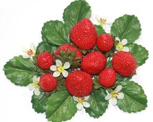 Meer dan 1000 idee n over aardbeien decoraties op pinterest vlinder cupcakes aardbeien for Decoratie stuk om te leven