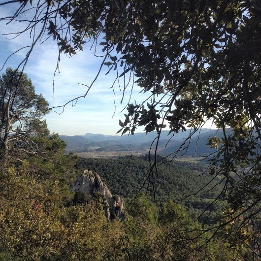 More from my weekend hike in La Loube, La Roquebrussanne. Provence, France