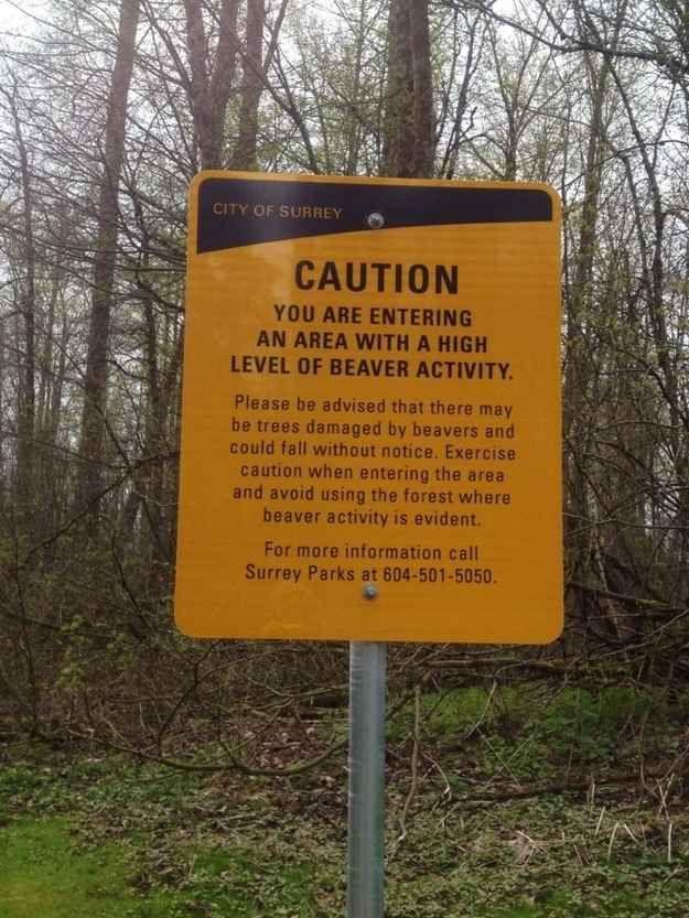 This warning: