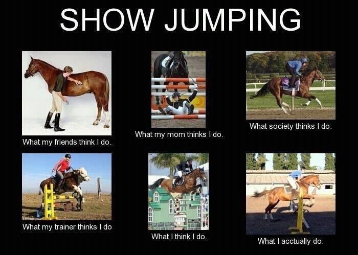 Show Jumping Interpretations - 1