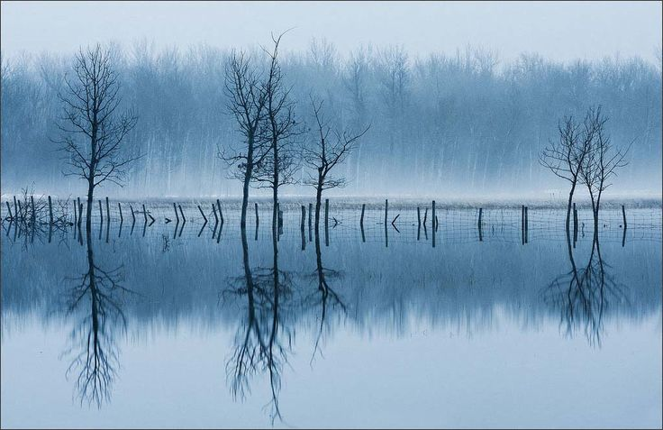 Serene Landscapes by Scott Crocker