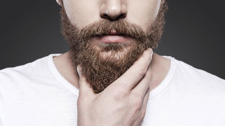 Are you looking for the absolute best beard balm? We break down the top brands…