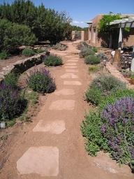 Xeriscape garden path