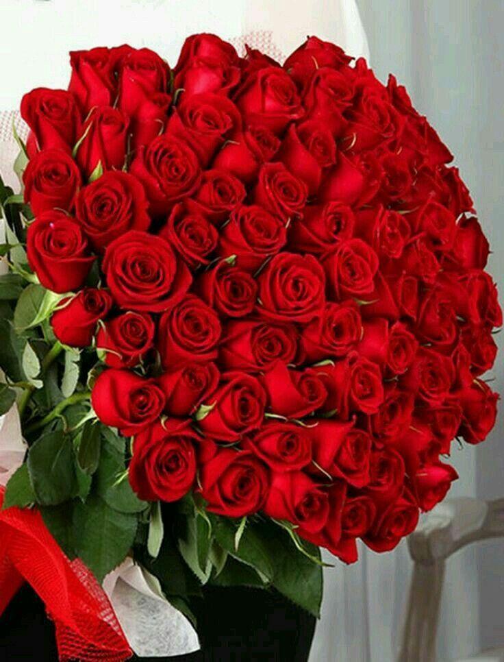 Boa Noite Com Imagens Belas Rosas Vermelhas Buque De Rosas