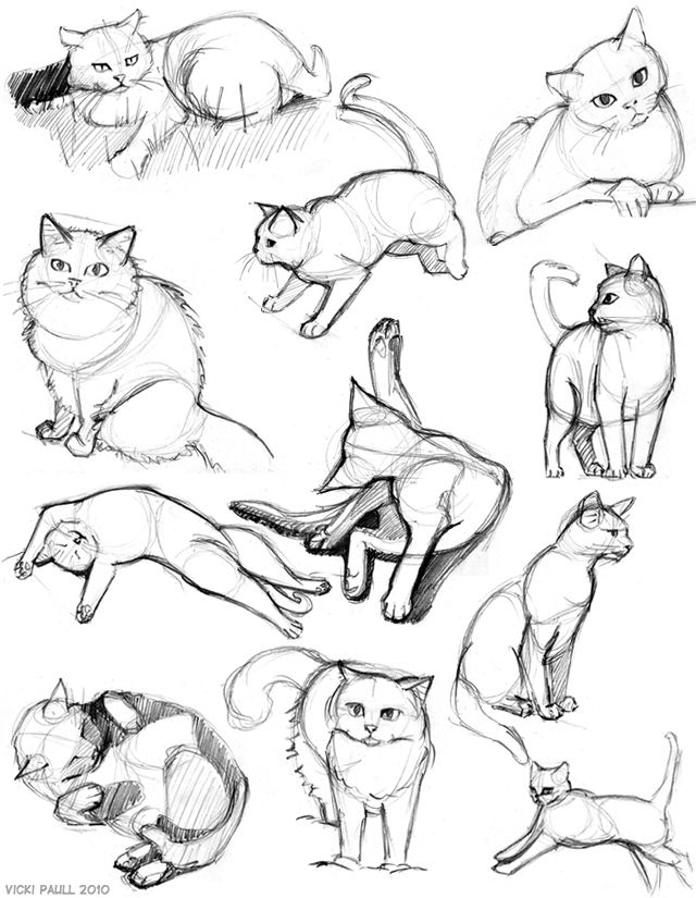 catsketchessept-oct2.jpg (640×825)
