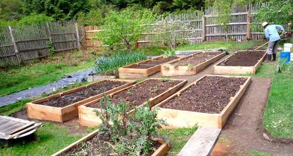 Raised bed directions