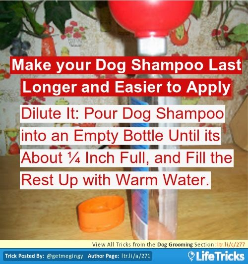 how to make your shampoo scent last longer
