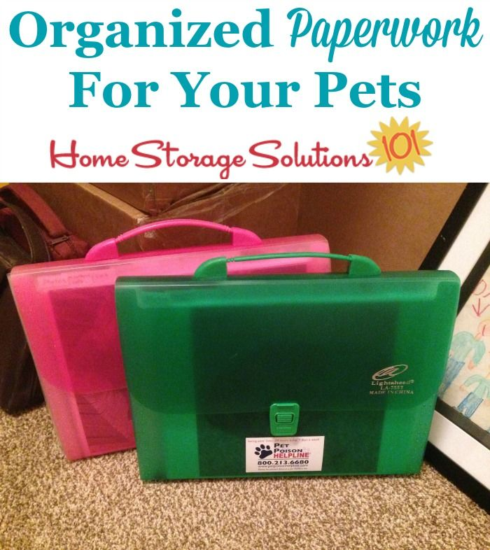 Organize Your Pet S Paperwork Like A Reader Samantha Did So It Was Easy To Find And Portable Pet Organization Pet Supplies Organization Organizing Paperwork