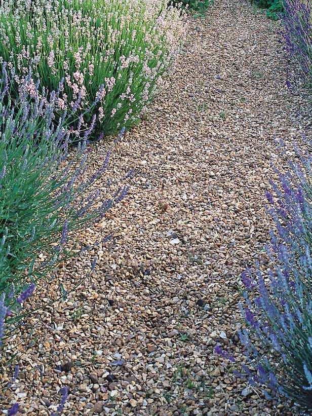 Limestone Gravel Floor Lets Plants Grow Through