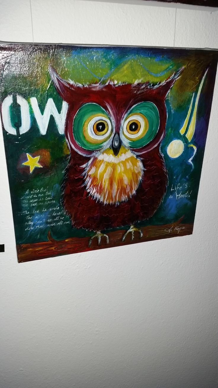 'Owl 'by Anna Freyne