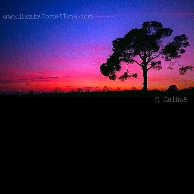 L'emozione del tramonto  #sunset #sunsets #sunset_hub #sunsetporn #sunset_pics #sunset_lovee #sunsethunter #sunsetlovers #sunsetsniper #sunset_united #sunset_madness #sunsets_captures #love #me #instadaily #instame #vscohub #vsco #instagood