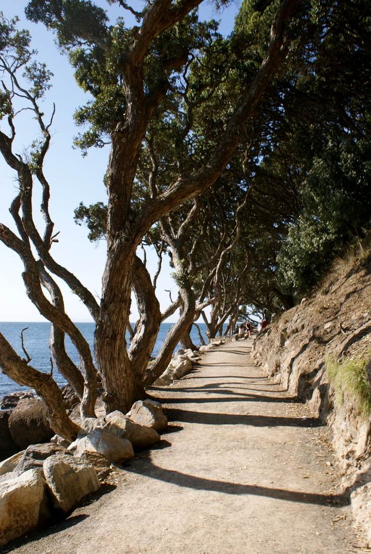 The walk around the base-track of Mount Maunganui.