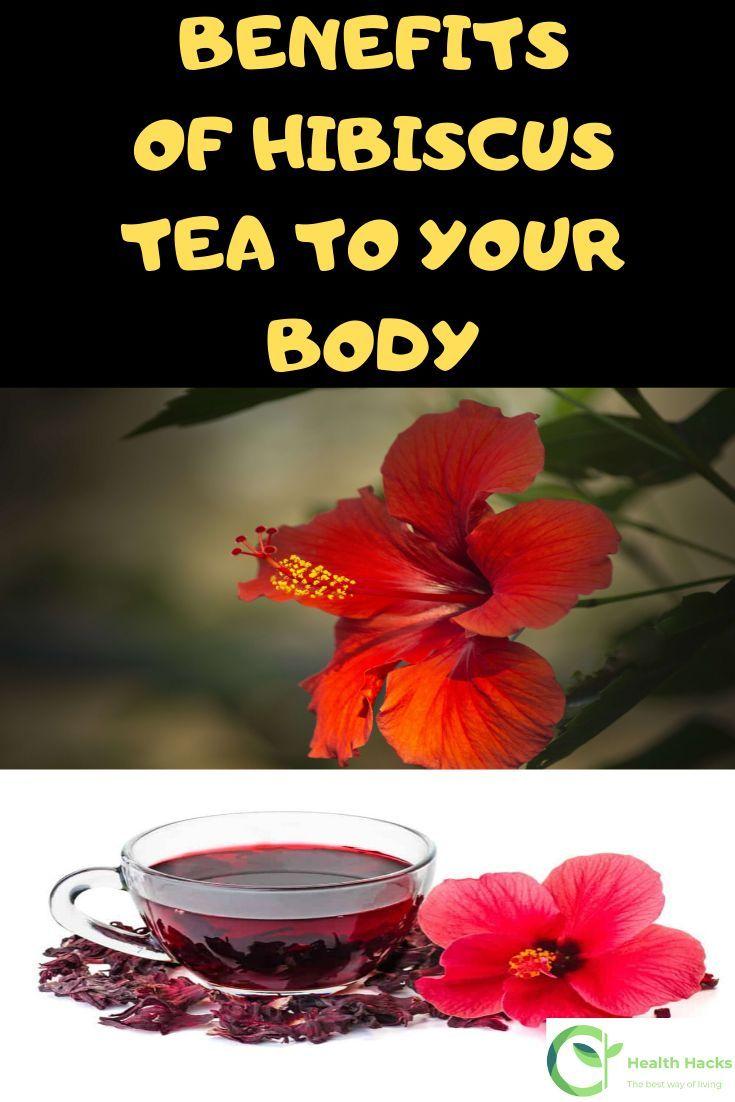 Hibiscus Tea Flowers In 2020 Hibiscus Tea Hibiscus Tea Benefits Hibiscus Drink
