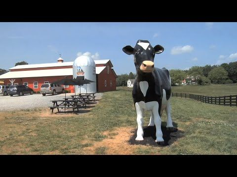 Mountain Fresh Creamery and Glo-Crest Dairy is a family business in northern Hall County.  They've seen great success as a start-to-finish dairy operation producing milk, butter and ice cream, and they've become an agritourism destination.  The Monitor's Kenny Burgamy visited recently, and provides a look at the operation.