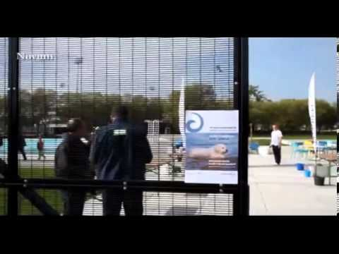 Zwembad vol honden - Swimming-Pool for Dogs (once a year) -YouTube