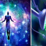 L' Autoguarigione spontanea come autodifesa del corpo. Ecco i 5 processi per attivarla