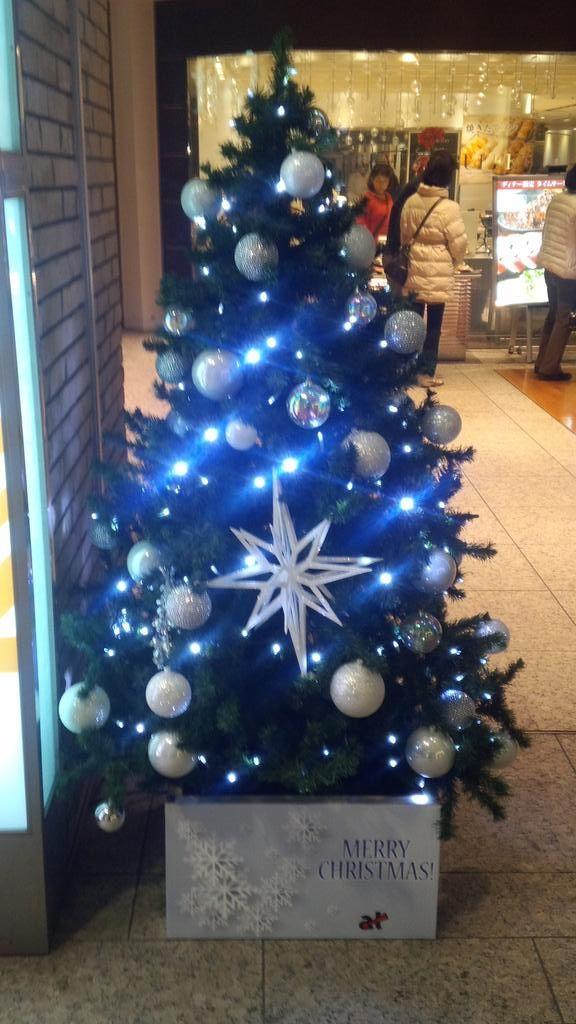 """""""所々に、こんなクリスマスツリーも☆彡"""""""