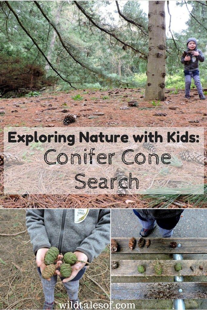Outdoor Scavenger Hunt For Kids Backyards