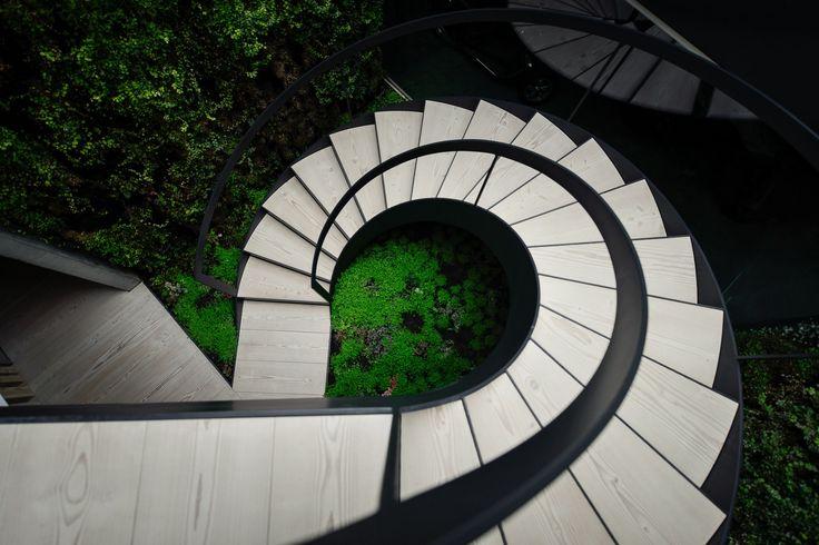 The Wall House, Cascais - Douglas stair treads by Dinesen.