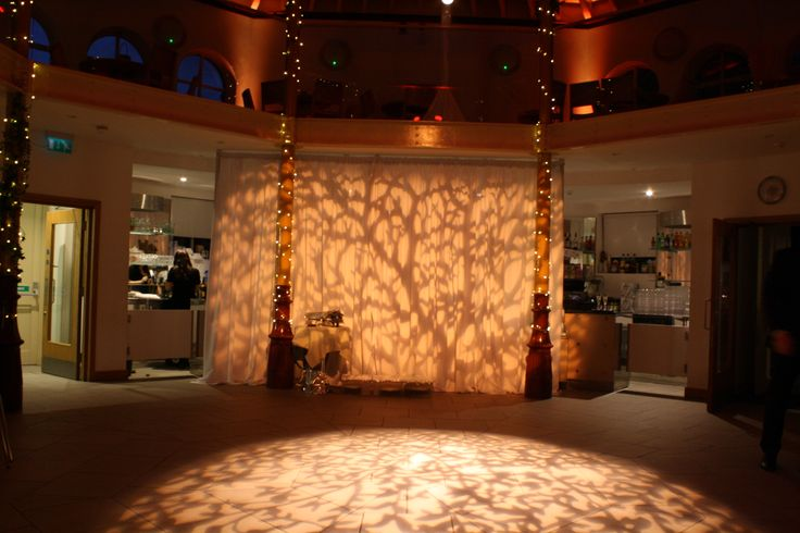 Tree And Branch Gobo Pattern Projections Ultra Lighting