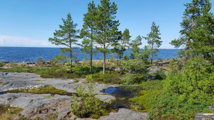 Fäboda Jakobstad Finland