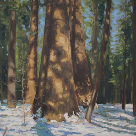 "#MagicMonday: ""The earth tucked herself in for the year with winter's cold, white scarf of snow."" ~Terri Guillemets Thank you to @schaeferart for this lovely painting of the first snow on giant sequoias in Calaveras Big Trees State Park."