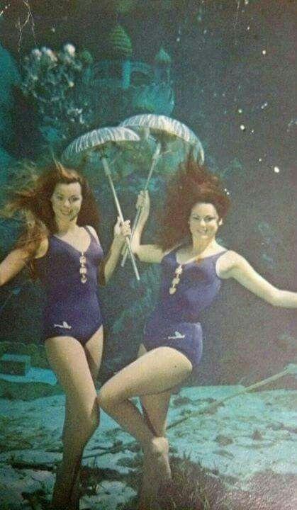 See Mermaids (and more) at Weeki Wachee Springs - 2 Dads ... |Meet Weeki Wachee Mermaids