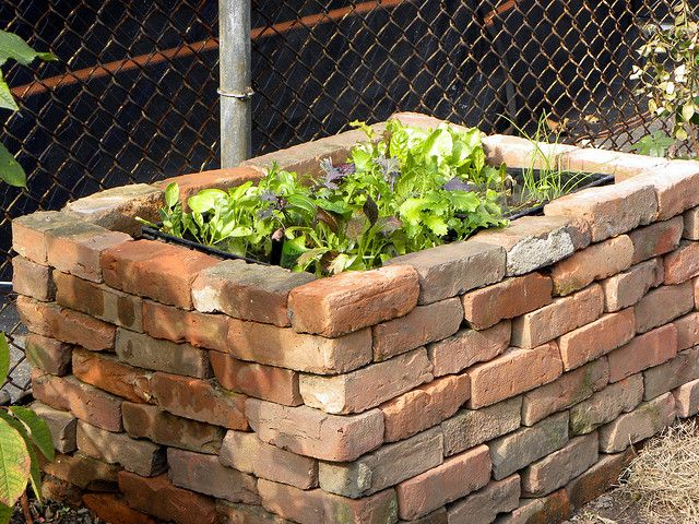 brick raised garden bed...chicken wire on the bottom deters moles...
