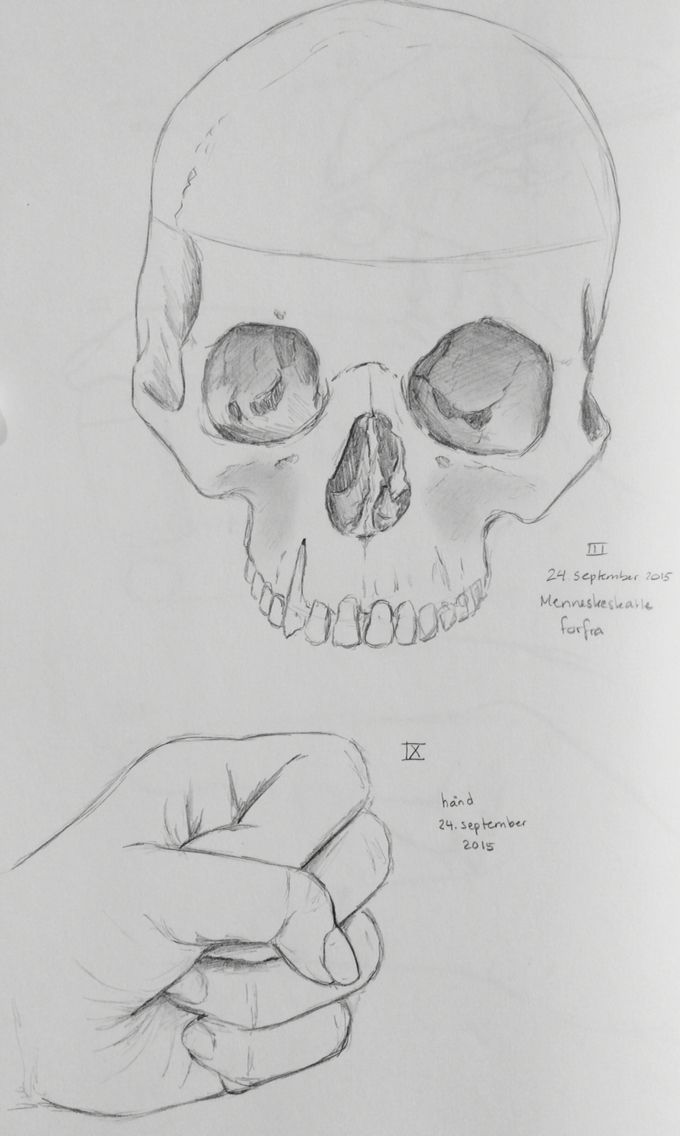 Human skull and hand
