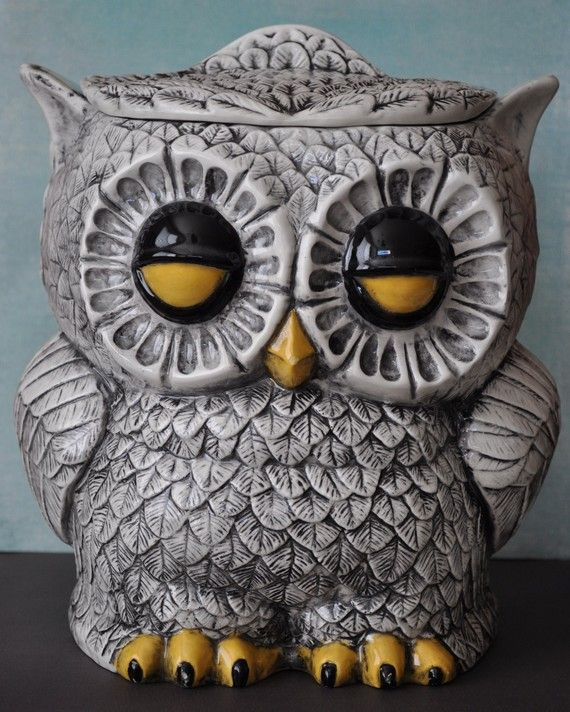Owl Cookie Jar, totally have a whole set of these! just dif colors