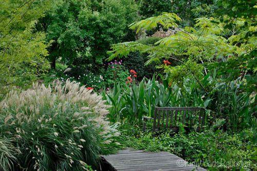 5 Must Read Blogs About Australian Gardening