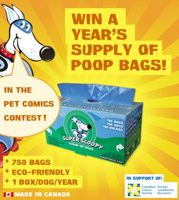 make comics with your pet pics at http://scoopybags.com/pet_comics_contest.php and you too could win a year's supply of poop bags! (see past winners at http://scoopybags.com/contest_winners.php )