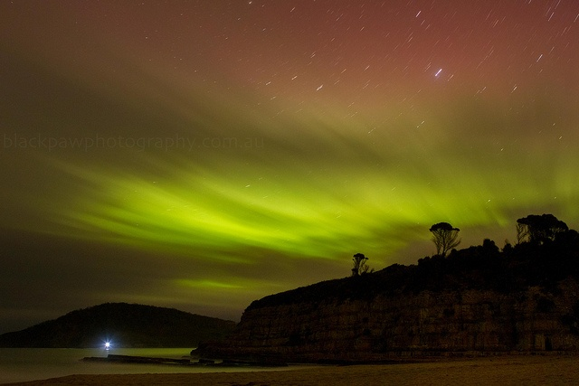 Aurora Australis - Goats Beach, South Arm, Tasmania, Australia