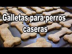 Cómo hacer galletas caseras para perros | Mascotas