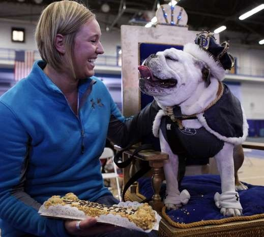 Most Beautiful Bulldog contest at Drake University