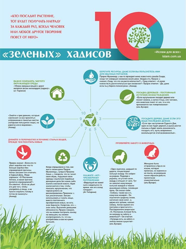 Десять «зеленых» хадисов с «экологическими» советами Пророка Мухаммада #экология #эко #природа #Пророк