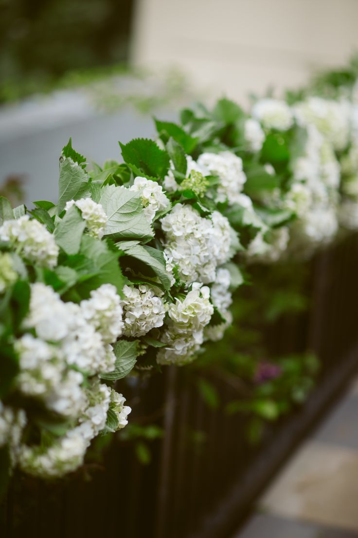 Railing lined with beautiful white hydrangea for ceremony.