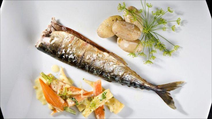 Varmrøkt makrell med kremete rotgrønnsaker