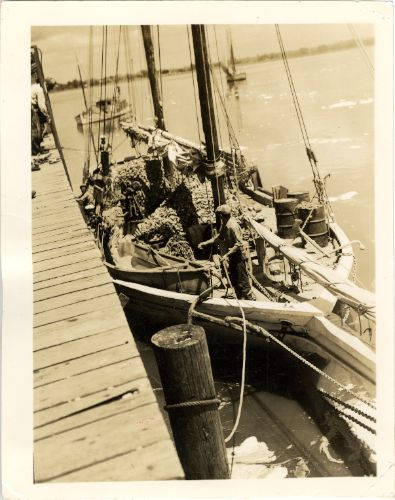 17 best images about ms gulf coast vintage photos on for Fishing piers in biloxi ms