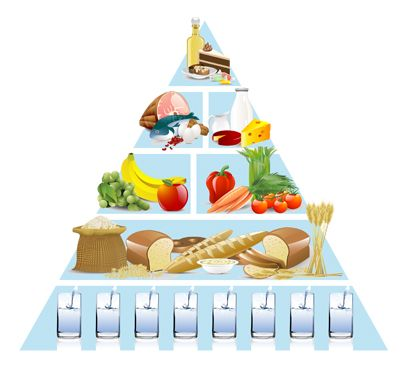 Not despond! food guide pyramid for older adults theme
