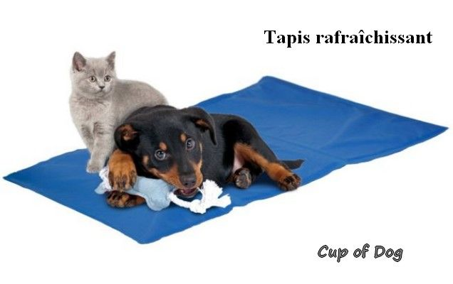 Tapis rafraichissant pour chien - Fresk Cooling KARLIE https://www.cupofdog.fr/panier-coussin-chihuahua-petit-chien-xsl-253.html