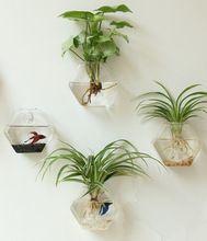 Shop home decor glass vase online Gallery - Buy home decor glass vase for unbeatable low prices on AliExpress.com