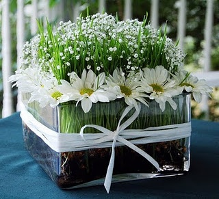 Daisy and baby's breath centerpiece with cut wheat grass!