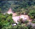 A dos de las víctimas en nuestro país les cayeron árboles en Sarchí y Mora.