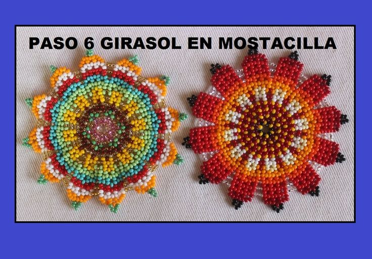 PASO SEIS GIRASOL EN MOSTACILLA