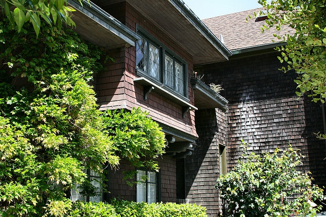 my home of yesteryear Favour of description essay of my house click here my home of yesteryear descriptive essay thoughtco, in this descriptive essay, my home of yesteryear dad's.