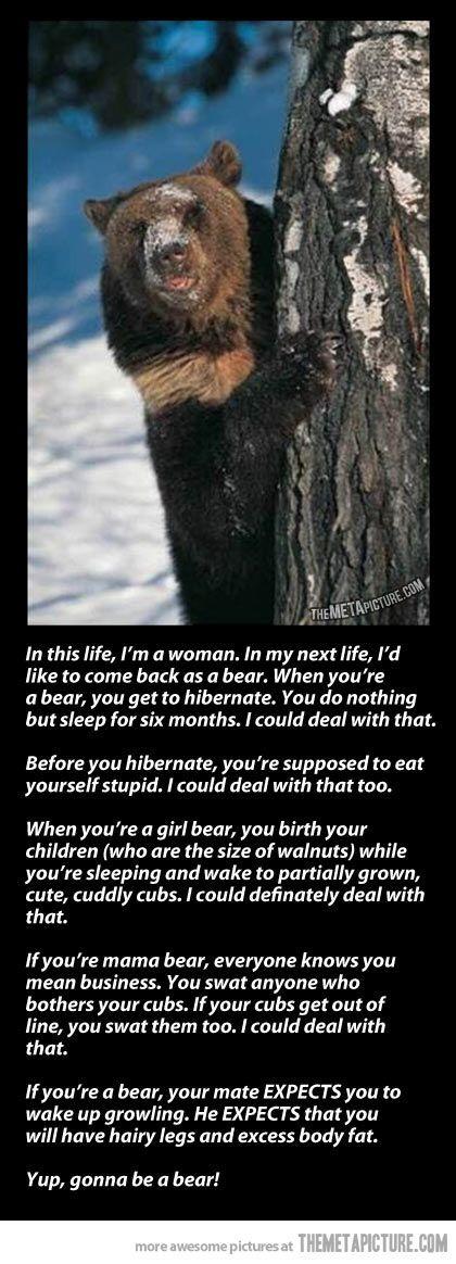 I'd like to be a bear.
