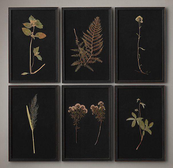 Hand-Pressed Botanicals on Linen Black / Motivos Botânicos Prensados Manualmente em Linho Preto (Moldura)