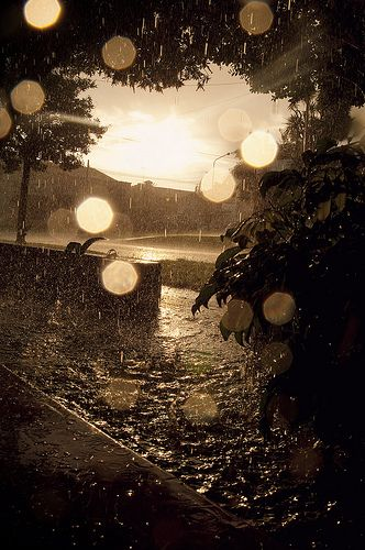 1000+ images about Sunshowers on Pinterest  Washington, Plays and Acrylics # Sunshower Love_194845