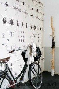 BE Onszelf Enjoy poster insecten spin wit zwart grijs - Onszelf Enjoy behang+posters - Behangexpresse / Onszelf - Behang KIDS en Baby - Behangstore